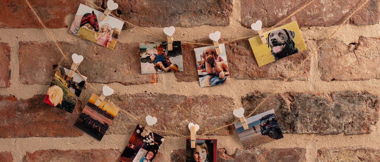 Seinälle ripustettuja valokuvia